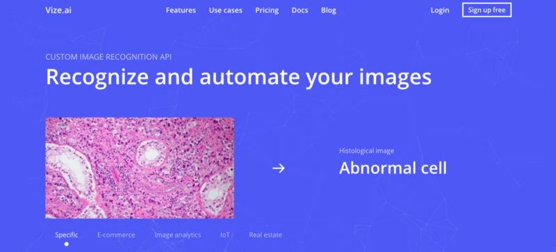 Vize Homepage