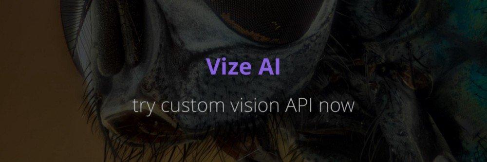 Vize.ai Custom API
